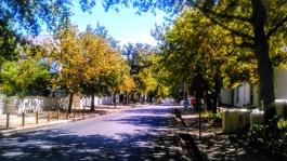 Stellenbosch - Dorp Street