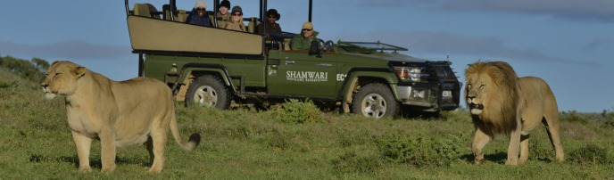 ShamwariGame-Drives-header