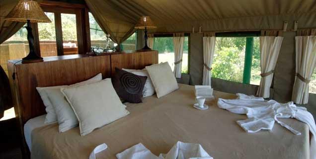 standard_tent