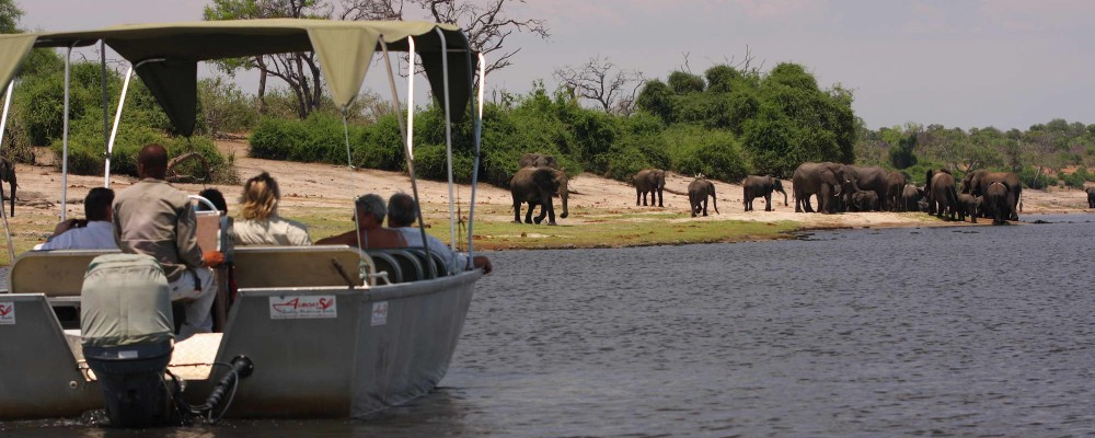 Elephant Valley Lodge Chobe Boat Cruise.jpg