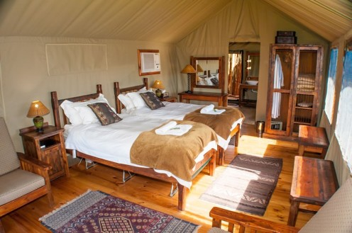 buffelsdrift-game-lodge-accommodation-in-oudtshoorn-luxury-tents-twb1