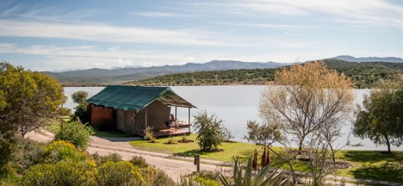 buffelsdrift-game-lodge-accommodation-in-oudtshoorn-luxury-waterfront-tents-20