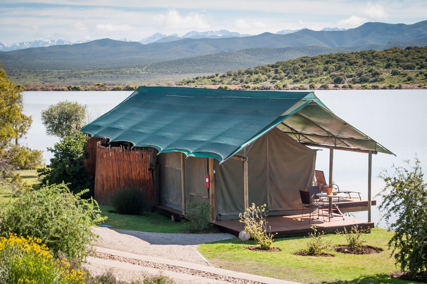 buffelsdrift-game-lodge-accommodation-in-oudtshoorn-luxury-waterfront-tents-21