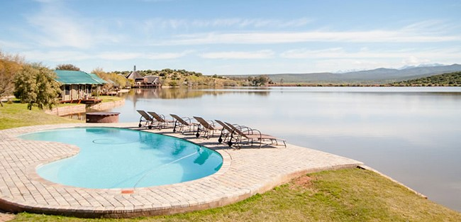 buffelsdrift-game-lodge-accommodation-in-oudtshoorn-swimmingpool-3