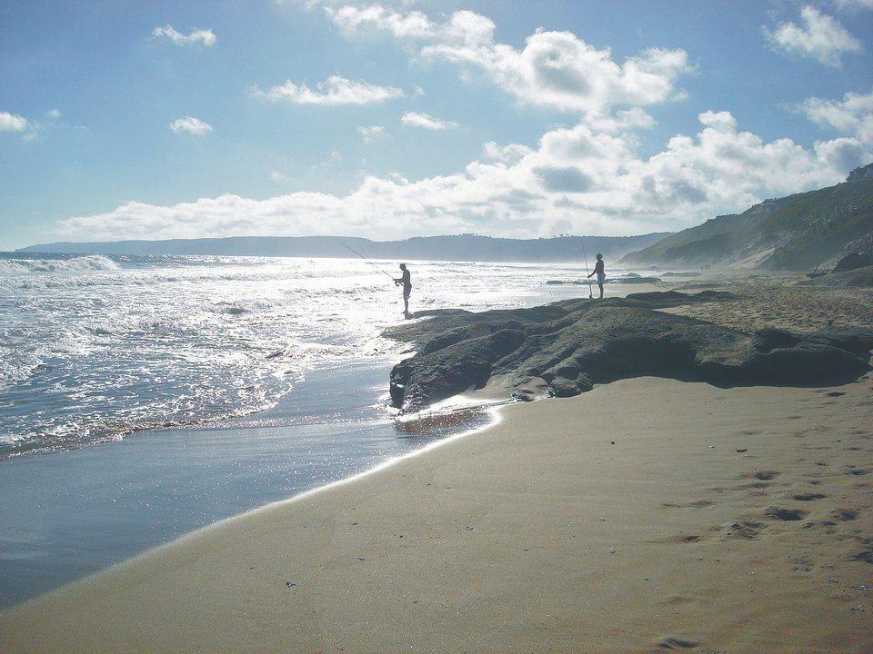 wilderness-beach