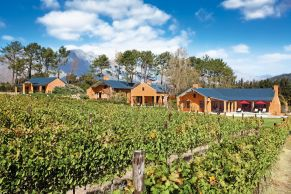 vineyard-suites-wine-franschhoek-1200x800
