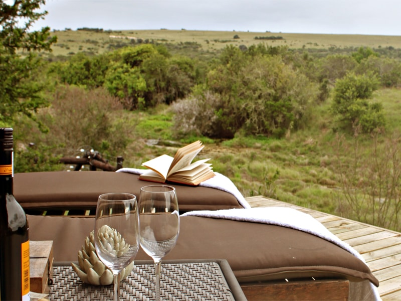 Amakhala_game_reserve_Hlosi_game_winewithview_regular-min.jpeg