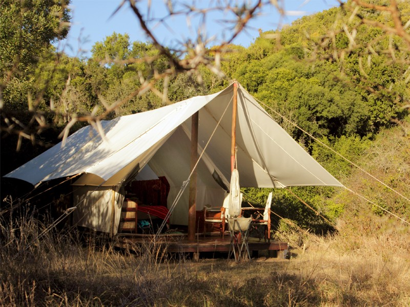Amakhala_Game_Reserve_Quatermains_Safari_Camp.jpeg
