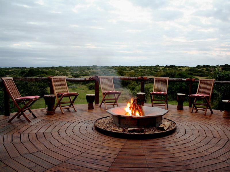 South_African_Game_Reserve_Bush_Lodge_Elephant_African_Bush-min