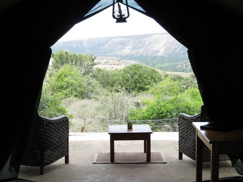 Woodbury-Tented-Camp-Amakhala-Game-Reserve-View-From-Tent