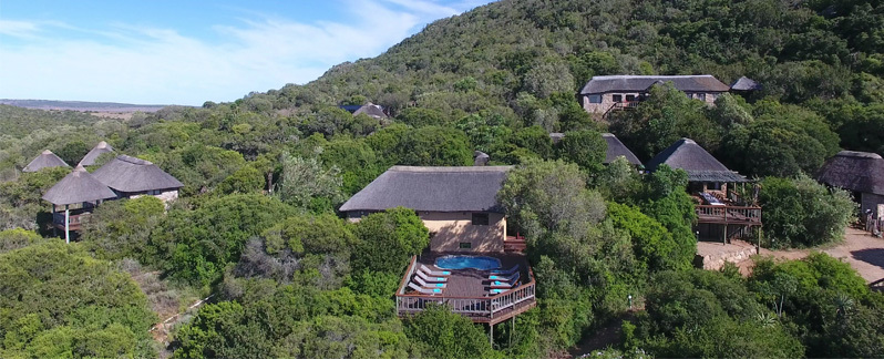 Woodbury_Lodge_Amakhala_Game_Reserve_Main_Lodge_Pool.jpeg