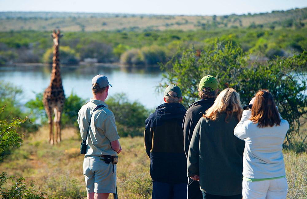 Kwandwe-Nature-Walk.jpg